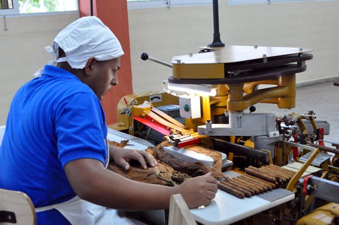 Ponen en marcha equipos de moderna fábrica de tabacos torcidos (+ fotos, audio y video)