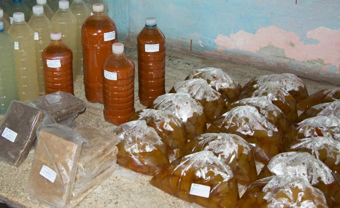 Industria alimenticia de Río Cauto diversifica sus producciones
