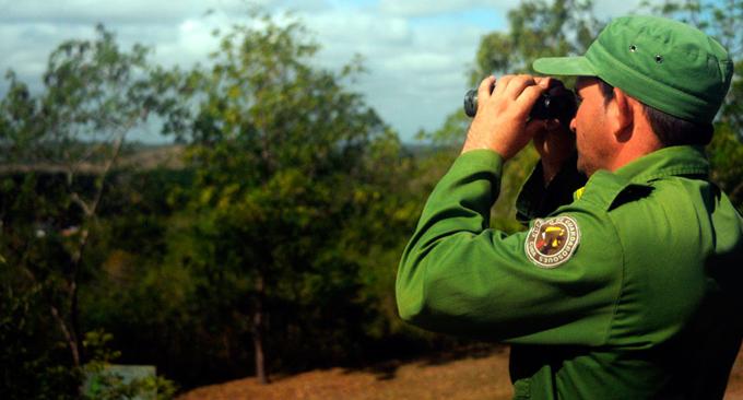 Cuba refuerza gestión y estrategia contra los incendios forestales