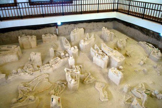 Promueven en Holguín estudios arqueológicos como parte de los programas priorizados de la ciencia