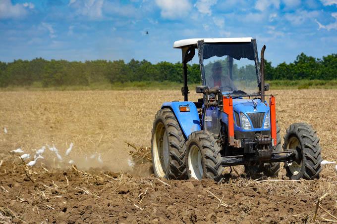 Más calidad y eficiencia en la producción de alimentos