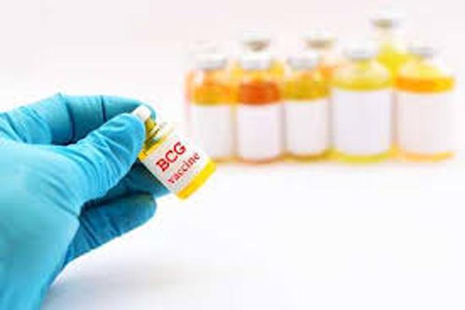 Vacuna BCG en la mira de los científicos para combatir la Covid-19