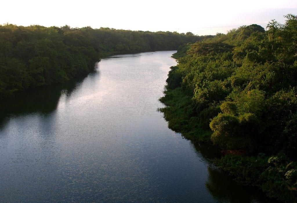 Rehabilitan cuenca del río Cauto