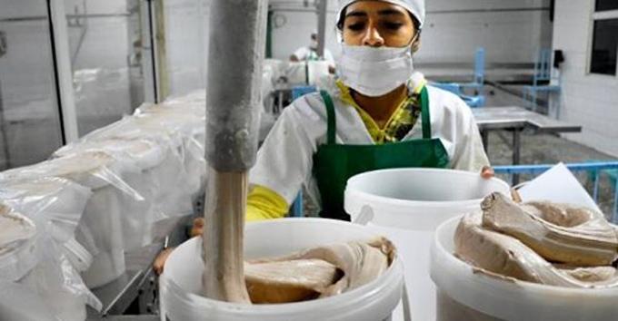 Industria láctea refuerza producciones