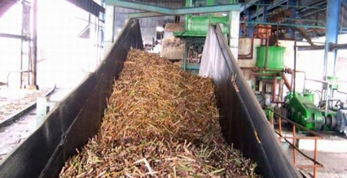 Azucareros en zafra cumplen protección contra la Covid-19 en Cuba
