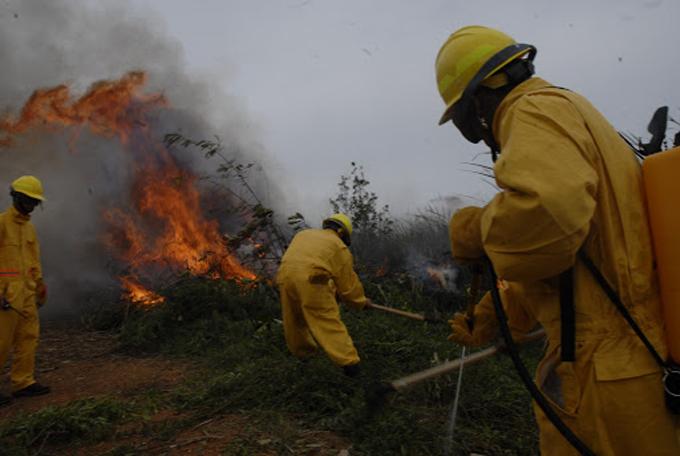 Insisten guardabosques en peligrosidad de incendios forestales