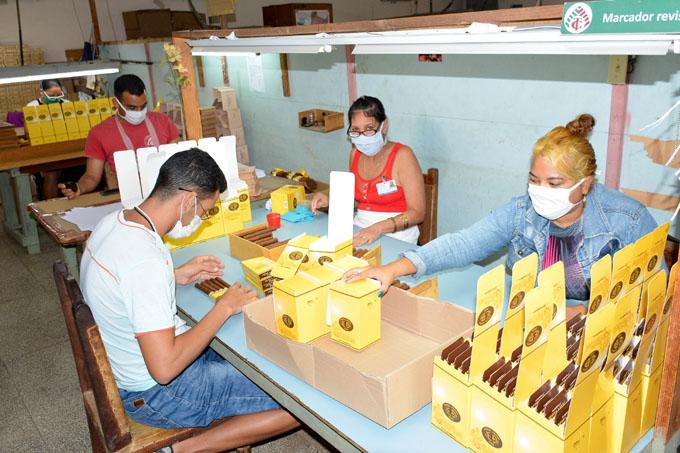 29 de Mayo,  Día del Trabajador Tabacalero:  Reto que exige mayor resultado
