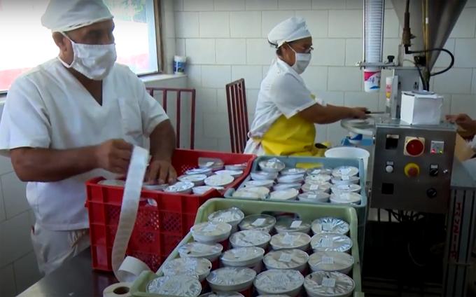 Industria láctea garantiza vitalidad de producciones (video)
