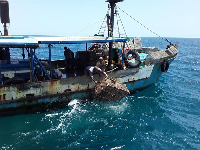 Inspectores harán cumplir Ley de pesca en Granma (+video)