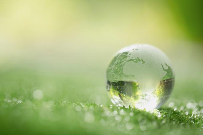 Aprueban norma contable para registrar gastos e ingresos ambientales (+video)