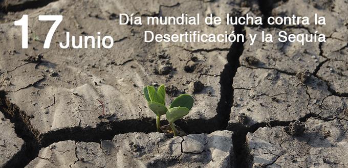 Evidencia Cuba resultados en programa contra la desertificación y la sequía (+video)