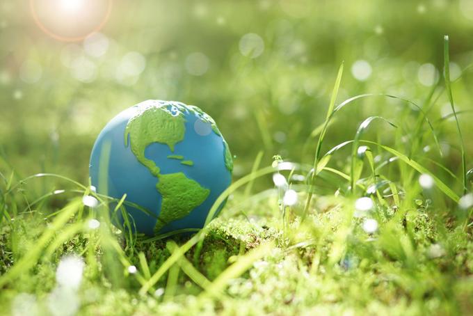 Convocan a concurso de fotografía online por el Día Mundial del Medioambiente (+video)