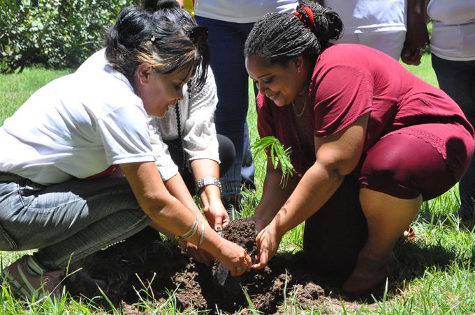 Tributo al gestor de los jardines botánicos en Cuba (+fotos y video)