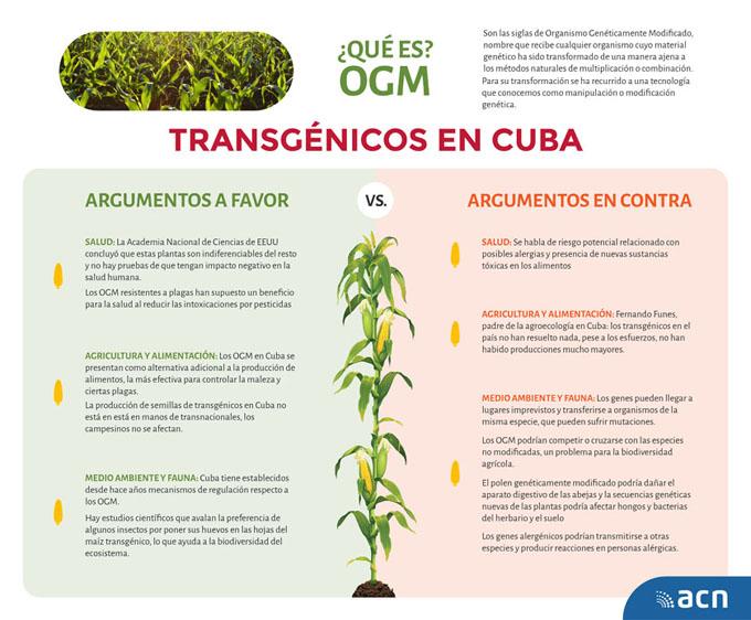 Organismos genéticamente modificados, entre la polémica y la necesidad (+ Infografía)