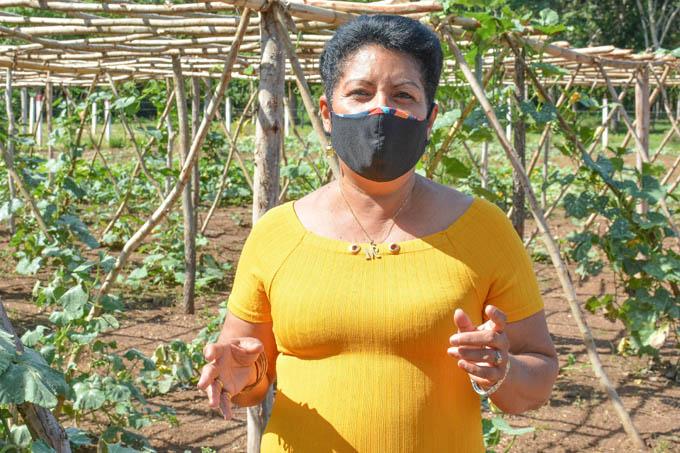 Decisivo aporte de la mujer a programa forestal