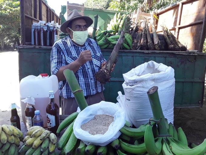 Desarrollan Festival de innovación agropecuaria local de Bayamo (+fotos)