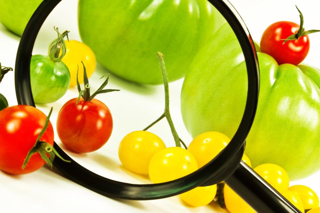 ¿Qué hace Cuba por mejorar la seguridad alimentaria y nutricional?