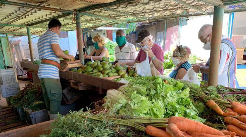 Aprueba gobierno de La Habana nuevos precios de productos agropecuarios