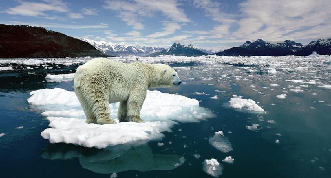 Desaparece el hielo en el planeta a toda velocidad
