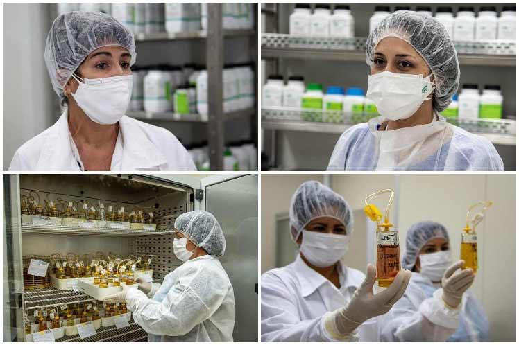 Biocen apuesta por impulsar calidad de vida en Cuba (+Fotos y video)