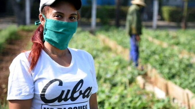Cuba toma medidas que favorecen a mujeres ante pandemia