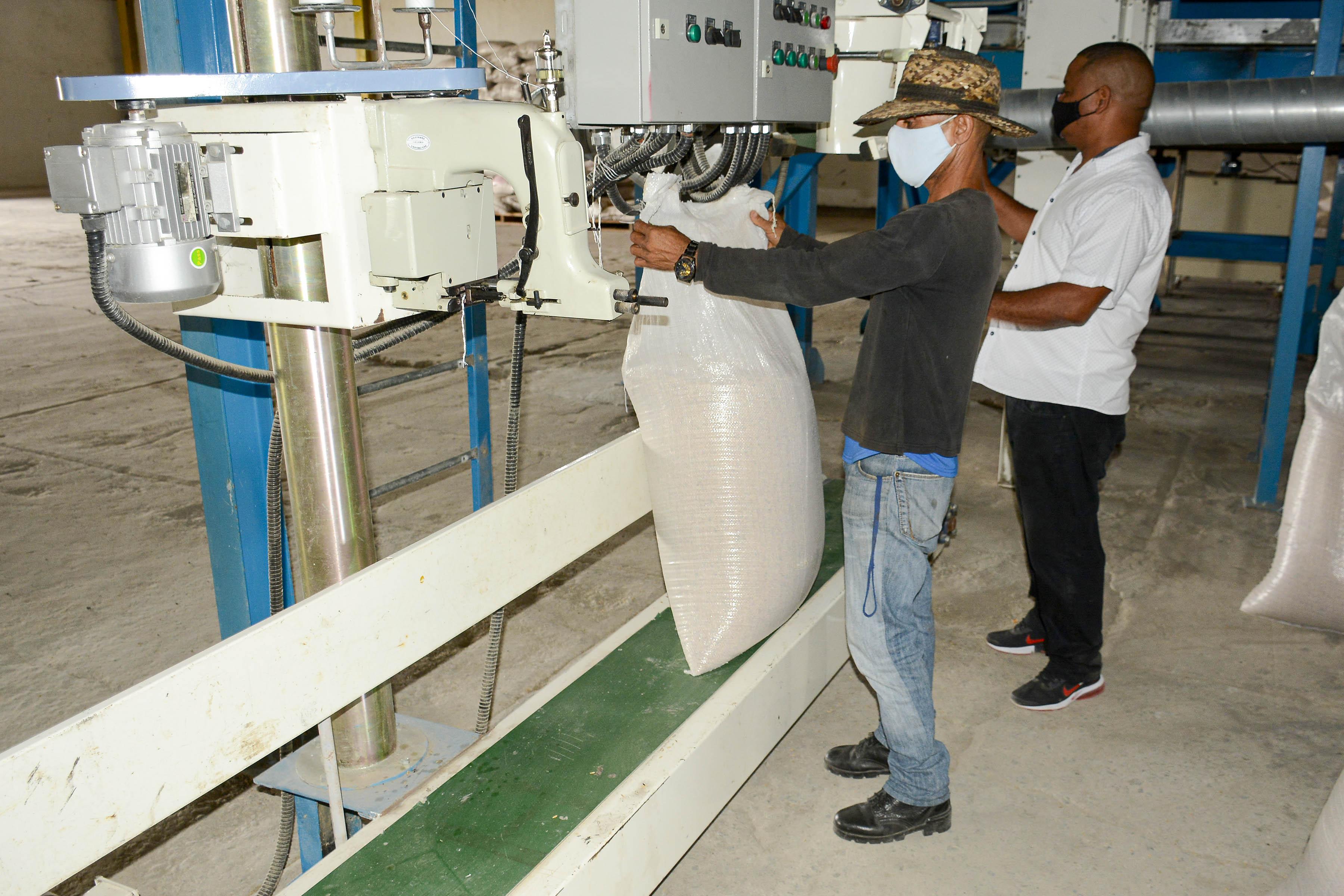 Avanza  puesta en marcha de planta de secado de arroz en Granma