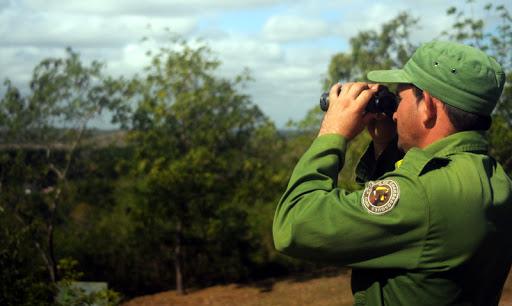 Acciones de prevención minimizan incendios forestales