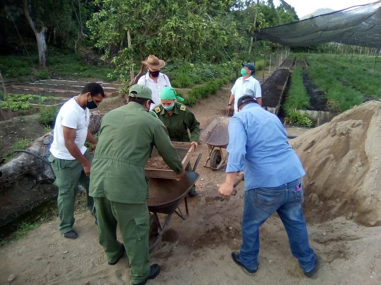 Realizan en Granma trabajo voluntario convocado por la CTC (+ fotos)