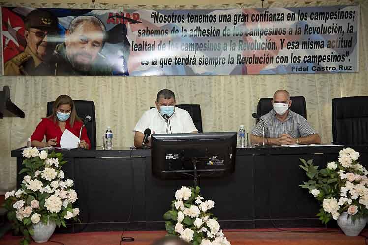 Nuevos contratos para más alimentos en Cuba (+Fotos)