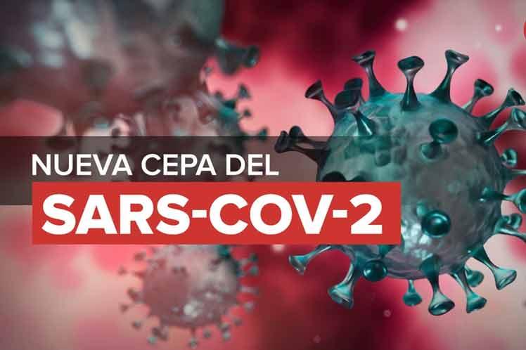 Cepas de coronavirus de Reino Unido e India hibridaron en Vietnam