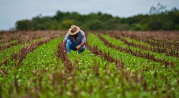 Cuba denuncia impacto de bloqueo de EEUU en seguridad alimentaria