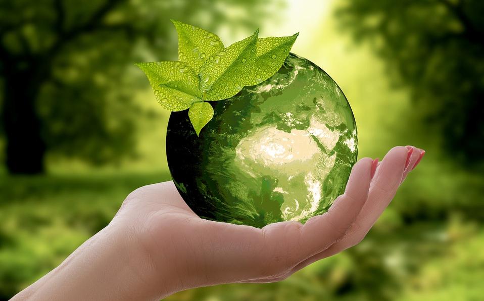 Preservar el mundo en que vivimos