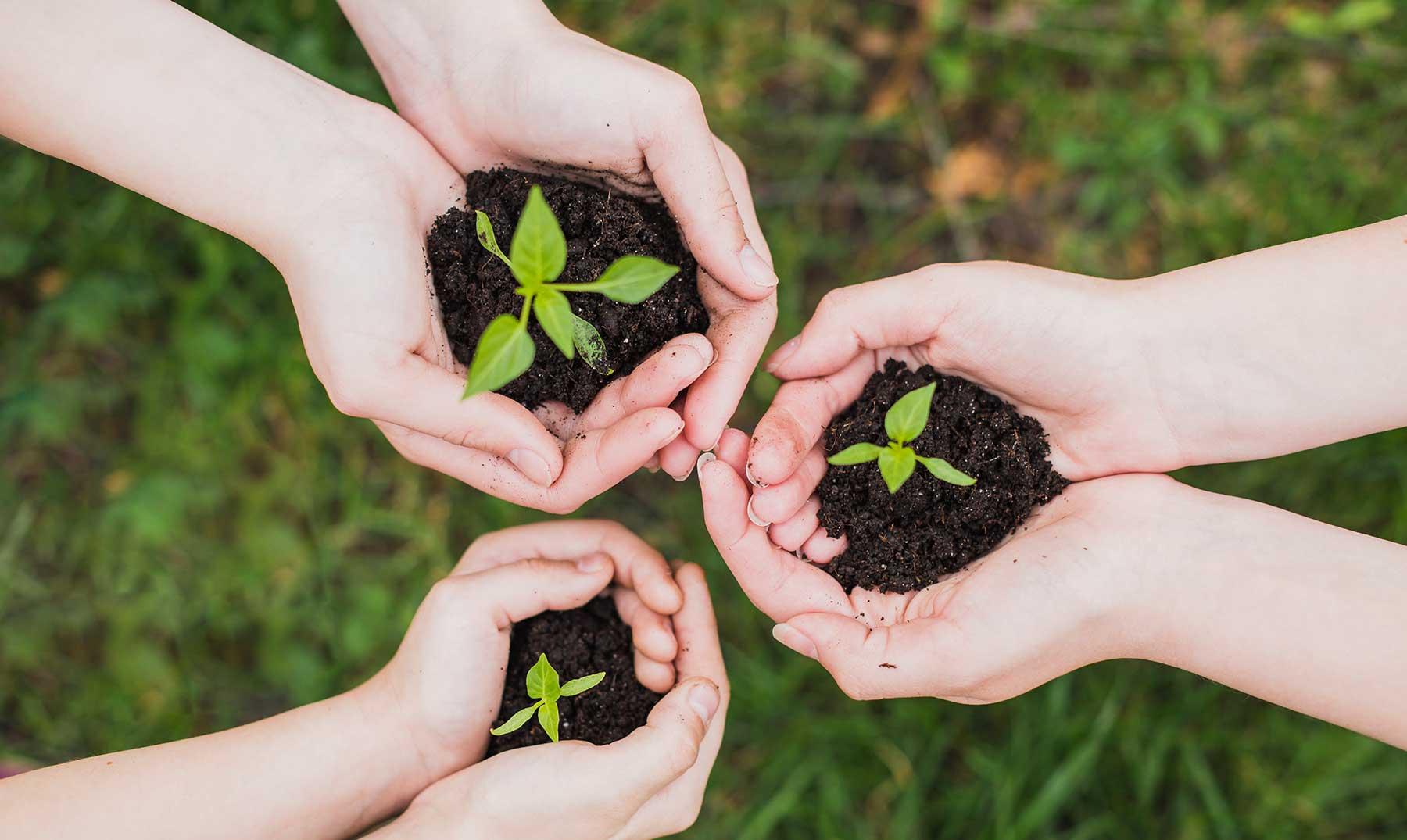 Comenzará en Cuba XIII Convención Internacional sobre Medio Ambiente
