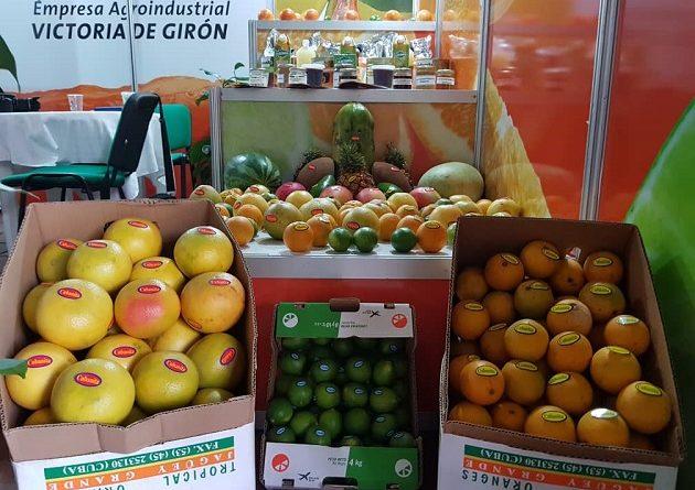 Modalidades de comercio favorecen exportación de productos agrícolas
