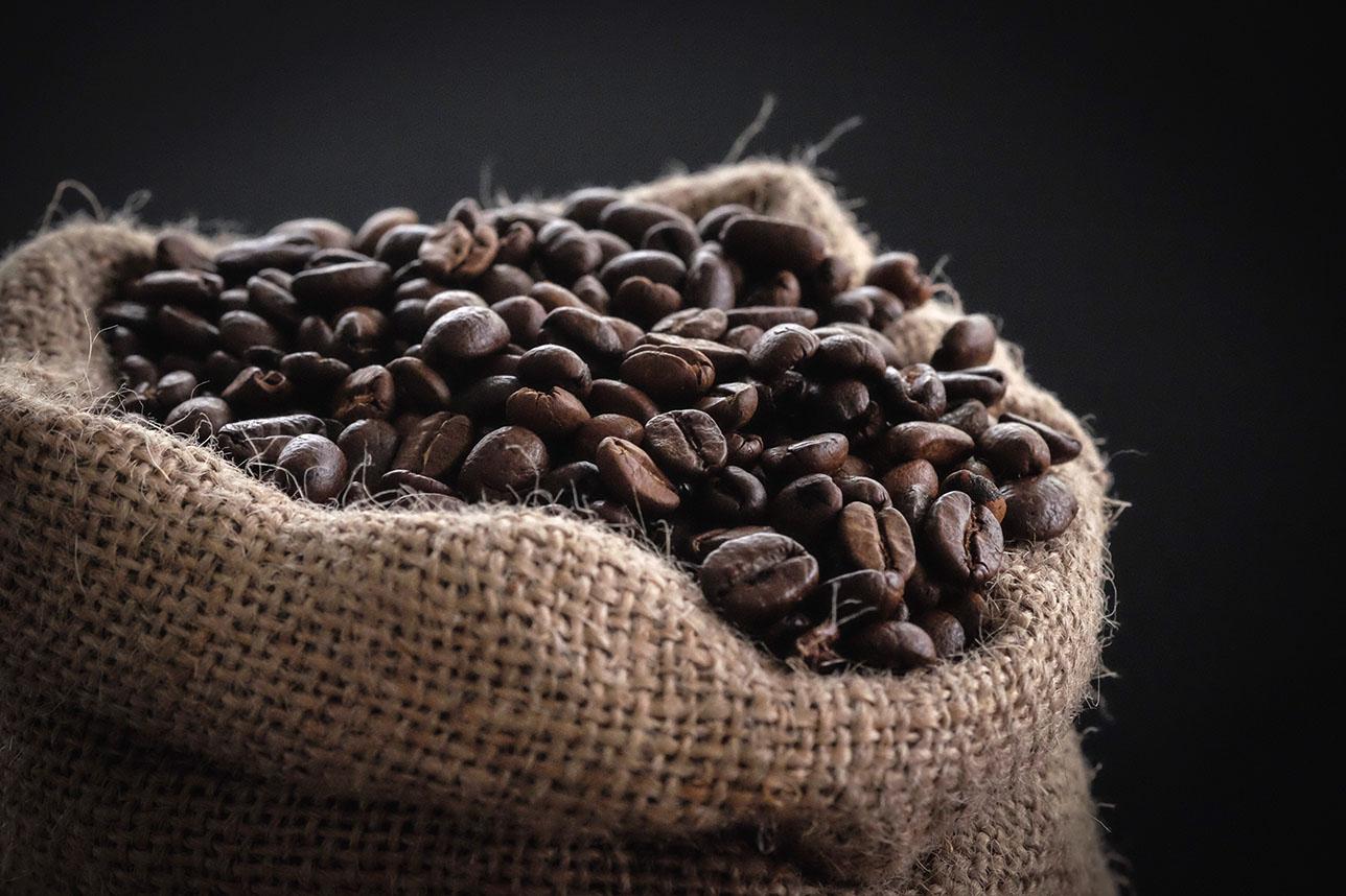 Cuba extiende producción de café al llano