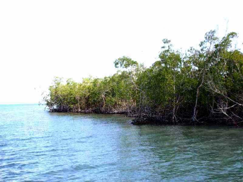 Ascienden a 11 las áreas protegidas de Granma