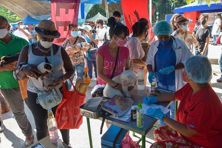 Cuba celebra día mundial de animales con decreto para su bienestar (+ Foto)
